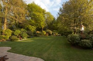 Rosemary Sutcliff's garden in 2011 (post her death in 1992)