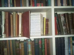 Rosemary Sutcliff 1992 Diary resting against books from her library